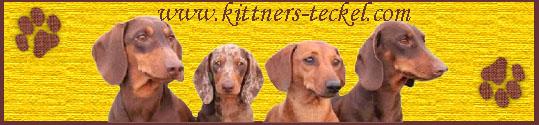 Kittners